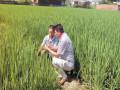 杨荫柏:发展现代农业助脱贫