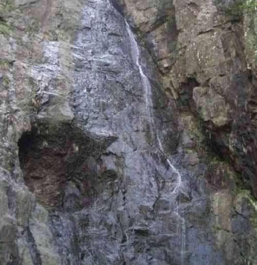 遛蛇哥养蟒19年 看与蛇有关的旅游地(图)