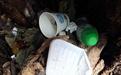 梧桐树沦为垃圾箱 树洞被塞满各式垃圾