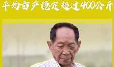 权威快报丨袁隆平海水稻团队启动产业化推广 拟8-10年实现