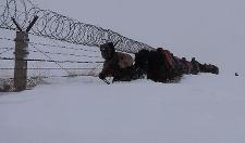 致敬!零下20℃,边防军人严寒巡逻积雪没过大腿,感动万千网友